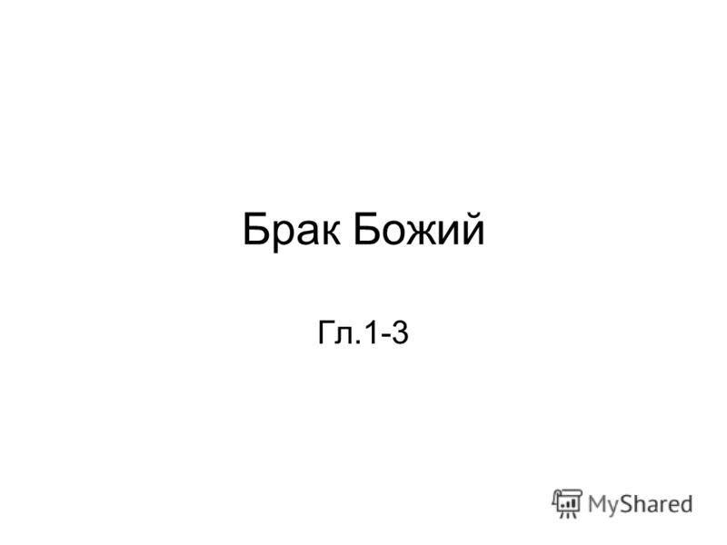 Брак Божий Гл.1-3