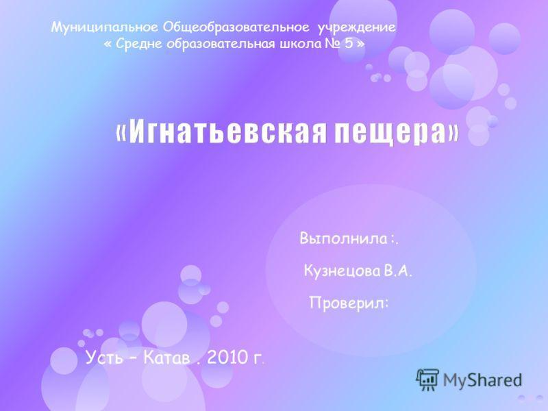 Усть – Катав. 2010 г. Муниципальное Общеобразовательное учреждение « Средне образовательная школа 5 »