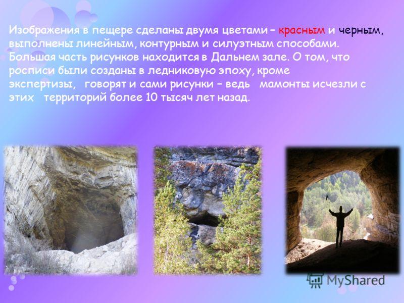 Изображения в пещере сделаны двумя цветами – красным и черным, выполнены линейным, контурным и силуэтным способами. Большая часть рисунков находится в Дальнем зале. О том, что росписи были созданы в ледниковую эпоху, кроме экспертизы, говорят и сами