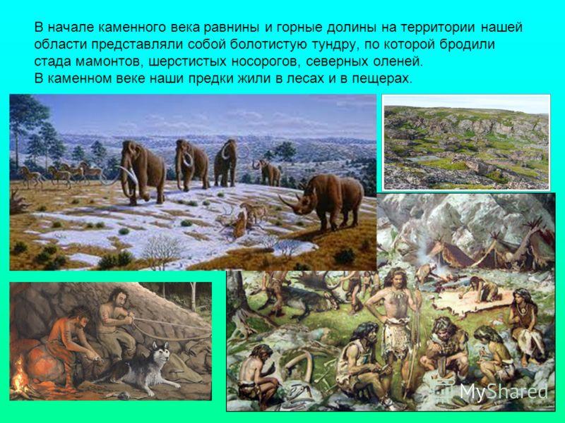 В начале каменного века равнины и горные долины на территории нашей области представляли собой болотистую тундру, по которой бродили стада мамонтов, шерстистых носорогов, северных оленей. В каменном веке наши предки жили в лесах и в пещерах.