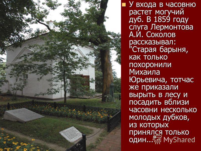 У входа в часовню растет могучий дуб. В 1859 году слуга Лермонтова А.И. Соколов рассказывал: