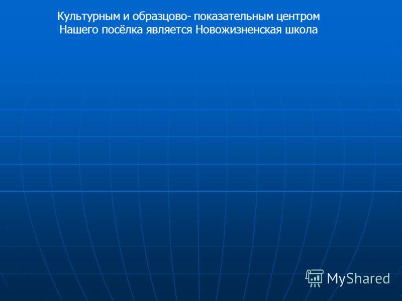 Культурным и образцово- показательным центром Нашего посёлка является Новожизненская школа