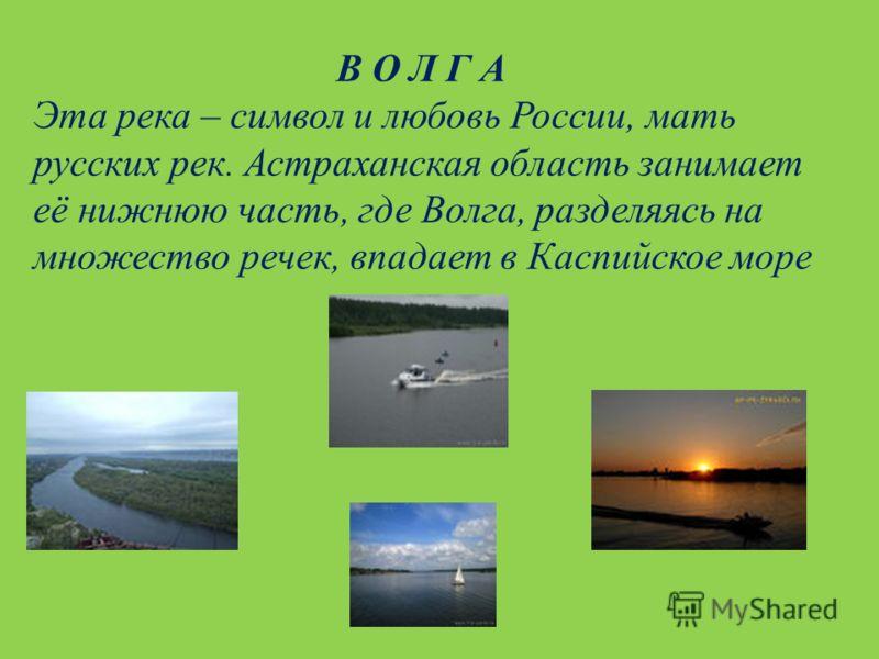 В О Л Г А Эта река – символ и любовь России, мать русских рек. Астраханская область занимает её нижнюю часть, где Волга, разделяясь на множество речек, впадает в Каспийское море