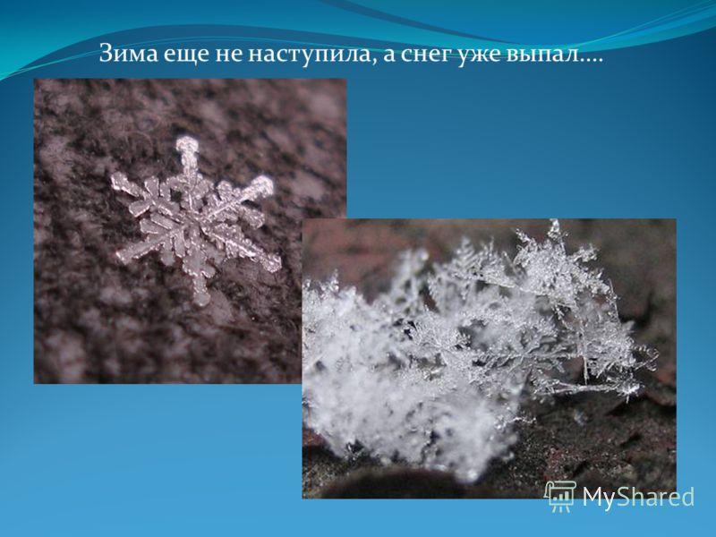 Зима еще не наступила, а снег уже выпал….