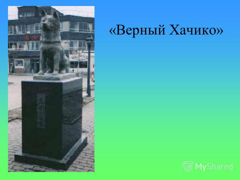 Памятник ученому И.П.Павлову