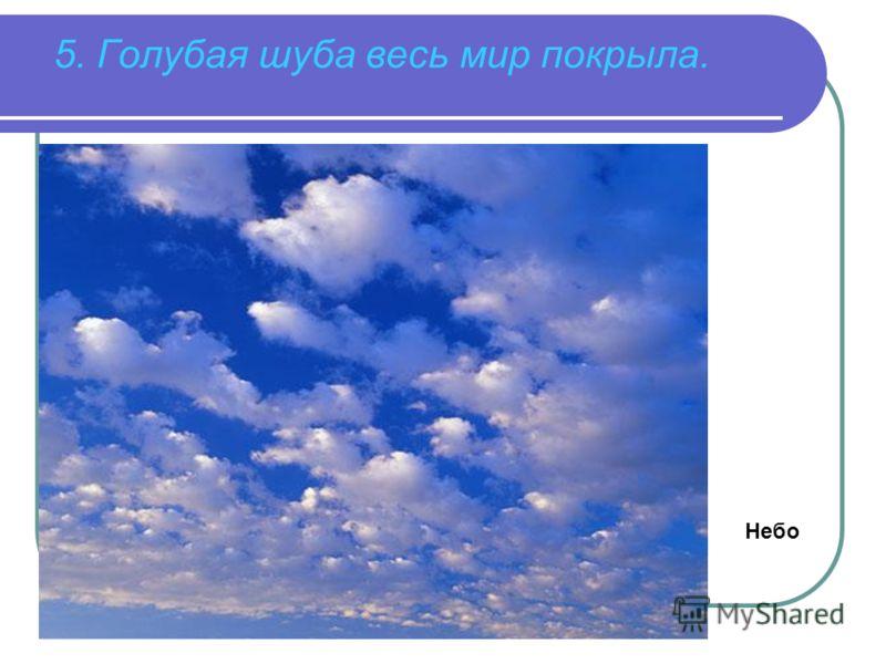 5. Голубая шуба весь мир покрыла. Небо