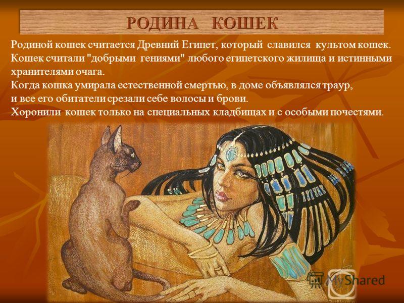 Кошки - кто же они? Откуда они появились? Когда и как они стали жить с человеком? Ученые до сих пор спорят, кто на самом деле кого приручил – человек кошку или кошка человека?