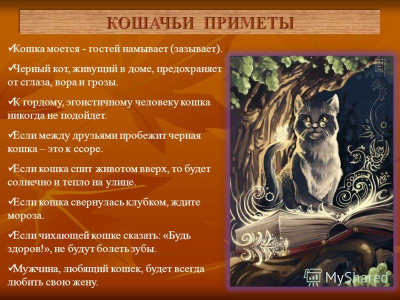 На Руси много примет, связанных с жизнью кошек. Эти приметы до сих пор в ходу, а основаны они были на суеверии о том, что кошки приносят удачу. Так, славяне решили, что трехцветная кошка обязательно принесет счастье своим хозяевам, а семицветный кот