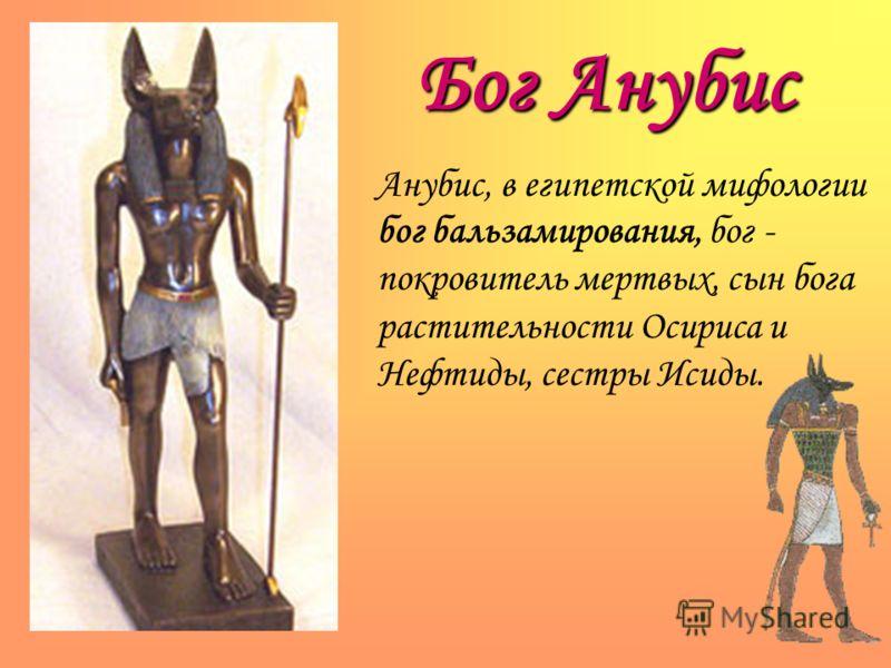 Бог Анубис Анубис, в египетской мифологии бог бальзамирования, бог - покровитель мертвых, сын бога растительности Осириса и Нефтиды, сестры Исиды.