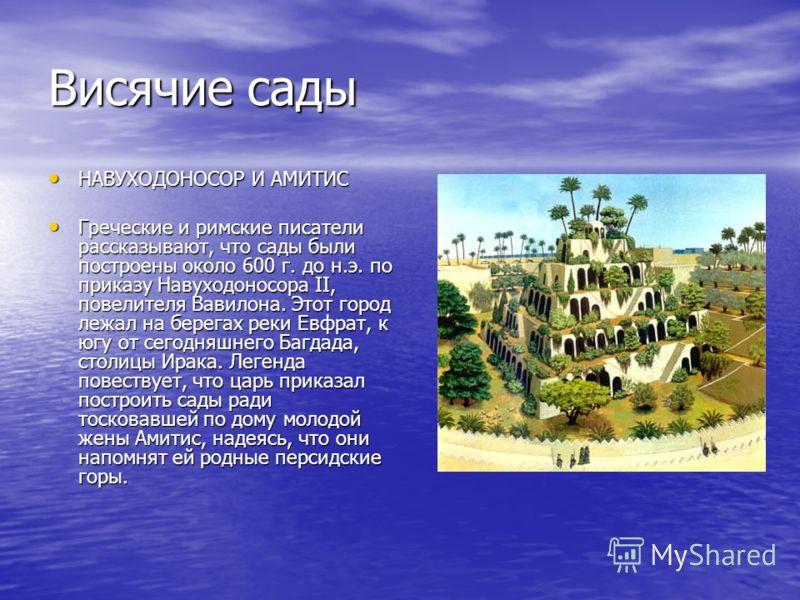 Висячие сады НАВУХОДОНОСОР И АМИТИС НАВУХОДОНОСОР И АМИТИС Греческие и римские писатели рассказывают, что сады были построены около 600 г. до н.э. по приказу Навуходоносора II, повелителя Вавилона. Этот город лежал на берегах реки Евфрат, к югу от се