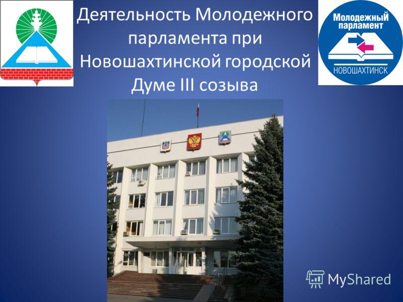 Деятельность Молодежного парламента при Новошахтинской городской Думе III созыва