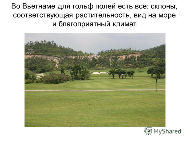 Во Вьетнаме для гольф полей есть все: склоны, соответствующая растительность, вид на море и благоприятный климат