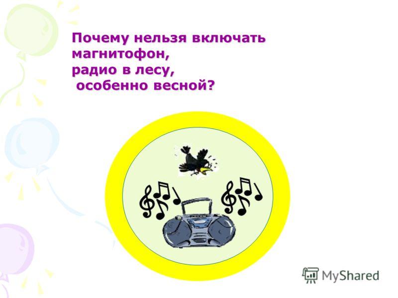 Почему нельзя включать магнитофон, радио в лесу, особенно весной? особенно весной?
