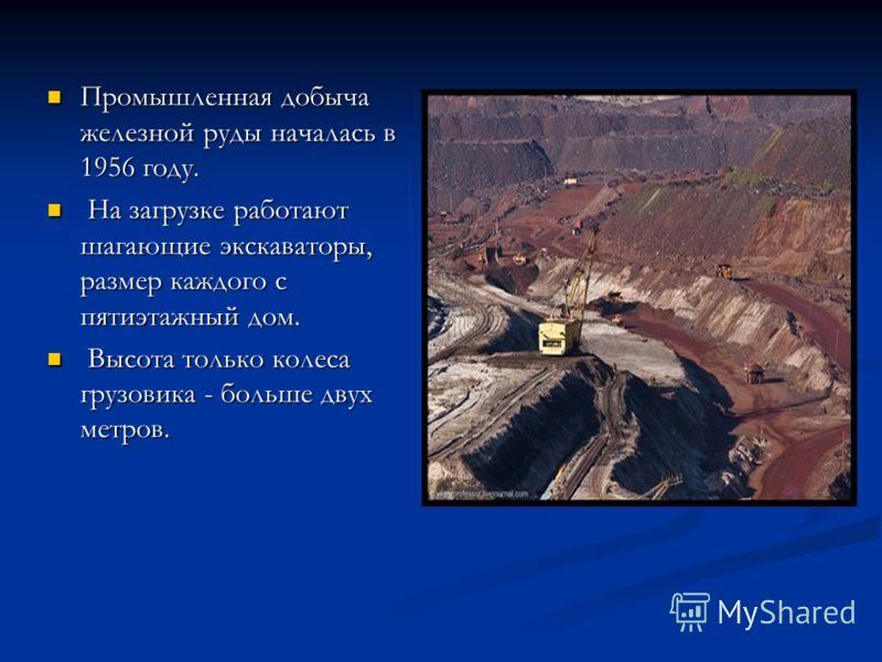Промышленная добыча железной руды началась в 1956 году. Промышленная добыча железной руды началась в 1956 году. На загрузке работают шагающие экскаваторы, размер каждого с пятиэтажный дом. На загрузке работают шагающие экскаваторы, размер каждого с п