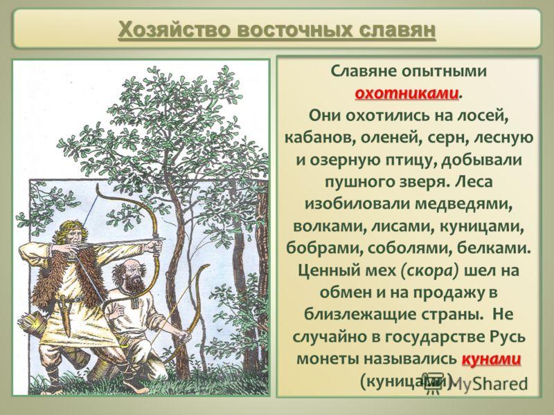 охотниками Славяне опытными охотниками. кунами Они охотились на лосей, кабанов, оленей, серн, лесную и озерную птицу, добывали пушного зверя. Леса изобиловали медведями, волками, лисами, куницами, бобрами, соболями, белками. Ценный мех (скора) шел на