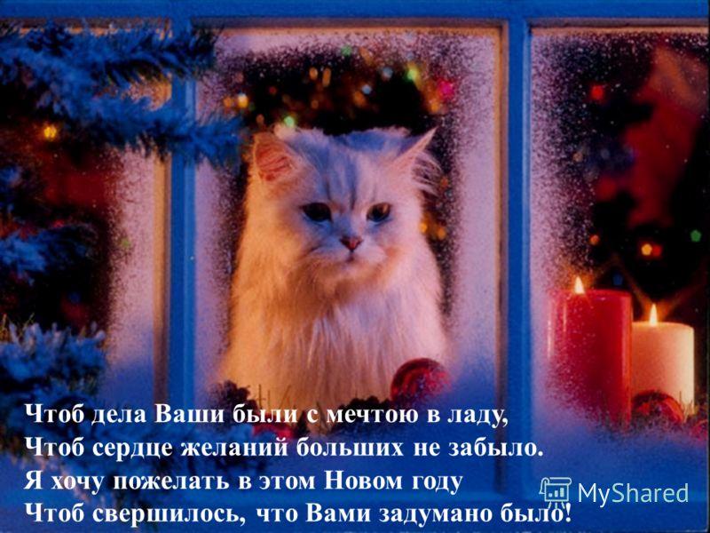 Пусть новый, веселый и радостный год Вам новое счастье с собой принесет!