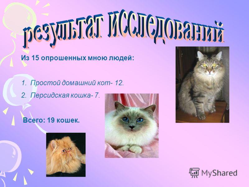 Из 15 опрошенных мною людей: 1.Простой домашний кот- 12. 2.Персидская кошка- 7. Всего: 19 кошек.