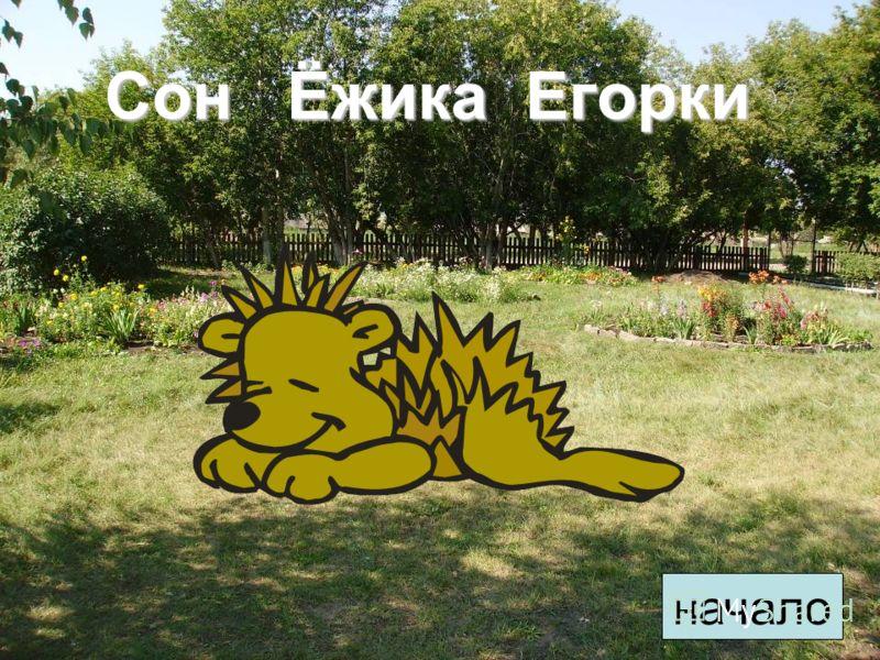 Сон Ёжика Егорки начало