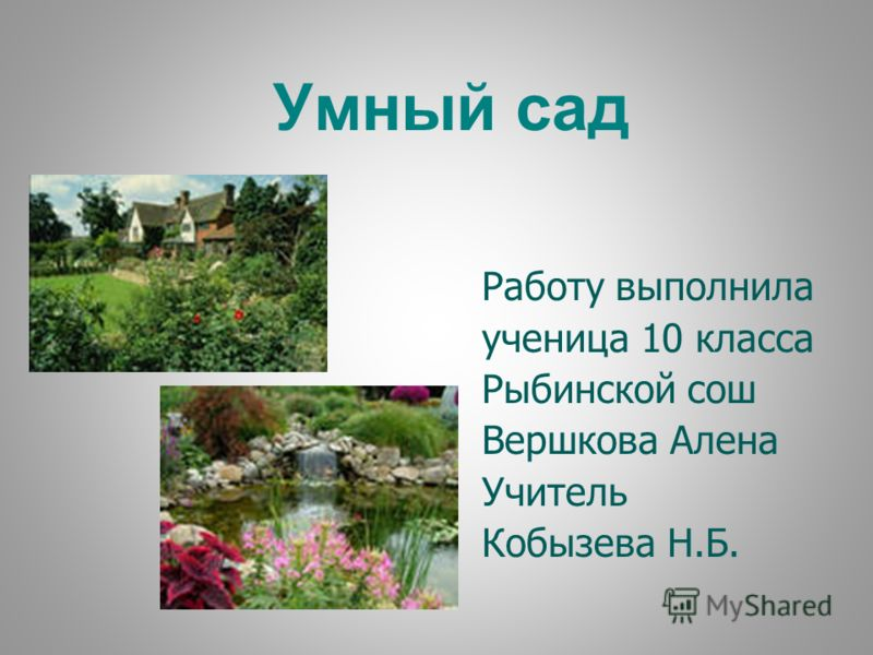Умный сад Работу выполнила ученица 10 класса Рыбинской сош Вершкова Алена Учитель Кобызева Н.Б.