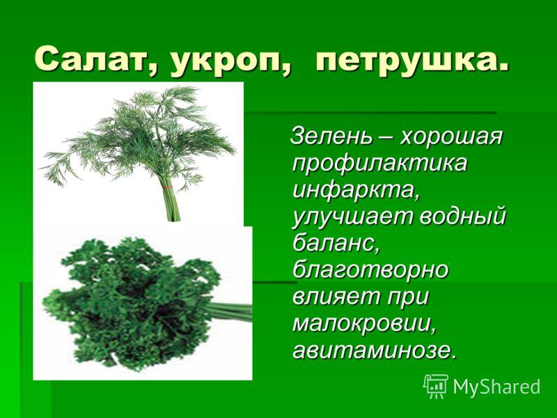 Салат, укроп, петрушка. Зелень – хорошая профилактика инфаркта, улучшает водный баланс, благотворно влияет при малокровии, авитаминозе. Зелень – хорошая профилактика инфаркта, улучшает водный баланс, благотворно влияет при малокровии, авитаминозе.