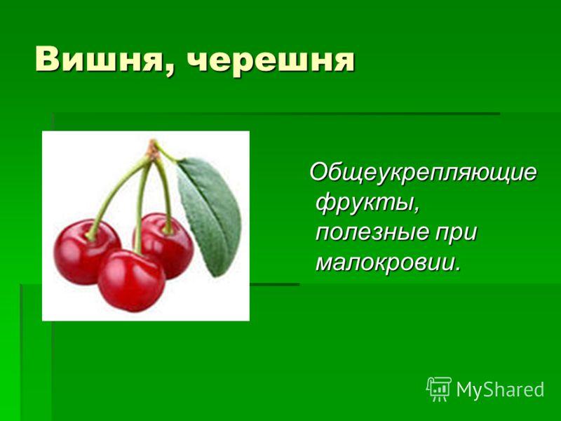 Вишня, черешня Общеукрепляющие фрукты, полезные при малокровии. Общеукрепляющие фрукты, полезные при малокровии.