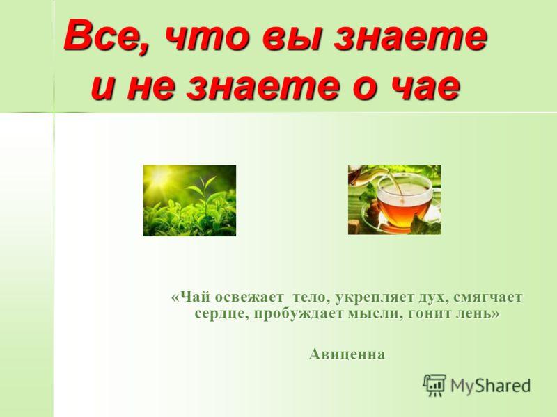 Все, что вы знаете и не знаете о чае «Чай освежает тело, укрепляет дух, смягчает сердце, пробуждает мысли, гонит лень» Авиценна