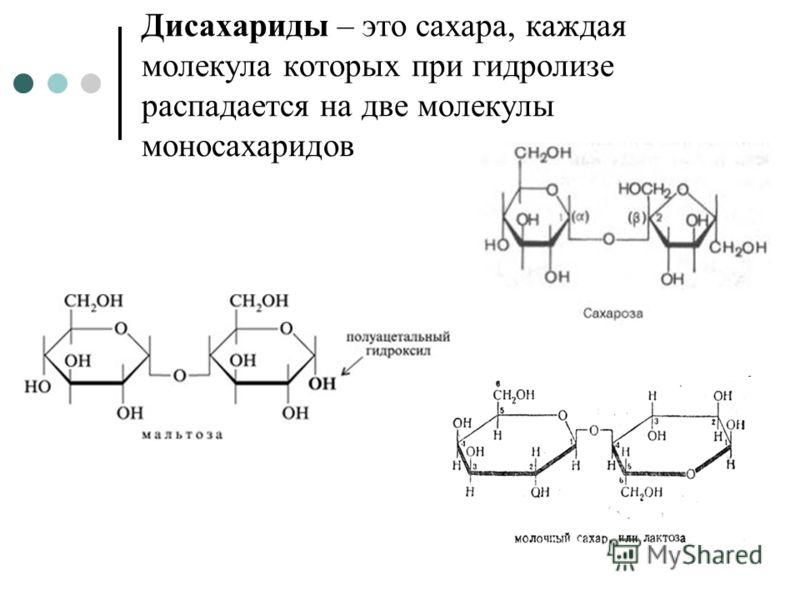 Дисахариды – это сахара, каждая молекула которых при гидролизе распадается на две молекулы моносахаридов