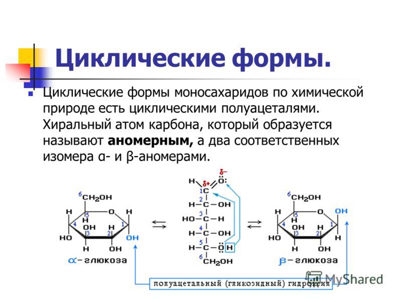 Циклические формы. Циклические формы моносахаридов по химической природе есть циклическими полуацеталями. Хиральный атом карбона, который образуется называют аномерным, а два соответственных изомера α- и β-аномерами.