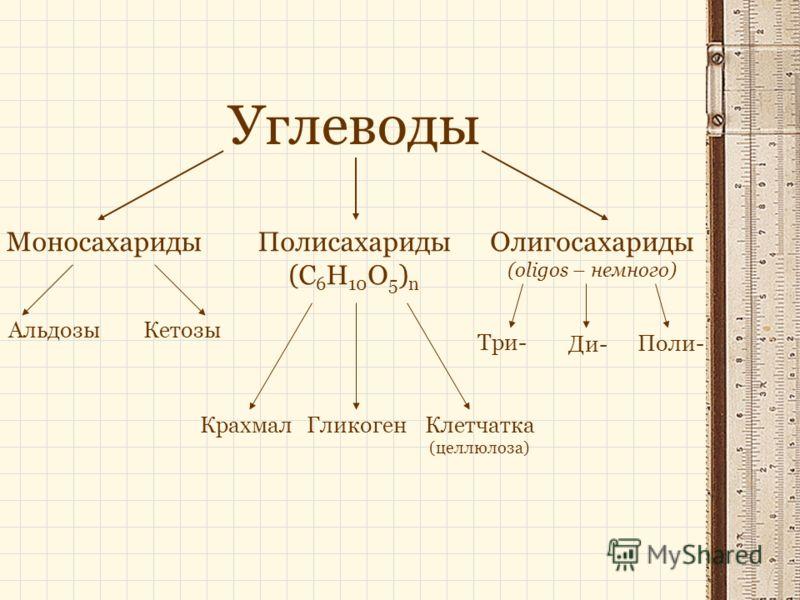 Углеводы МоносахаридыПолисахариды (C 6 H 10 O 5 ) n Олигосахариды (oligos – немного) АльдозыКетозы Три- Ди- Поли- КрахмалГликогенКлетчатка (целлюлоза)