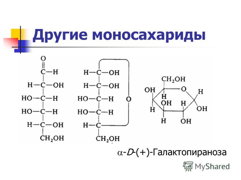 Другие моносахариды -D-(+)-Галактопираноза
