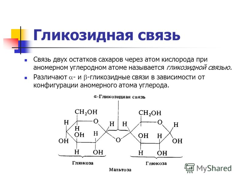 Гликозидная связь Связь двух остатков сахаров через атом кислорода при аномерном углеродном атоме называется гликозидной связью. Различают - и -гликозидные связи в зависимости от конфигурации аномерного атома углерода.