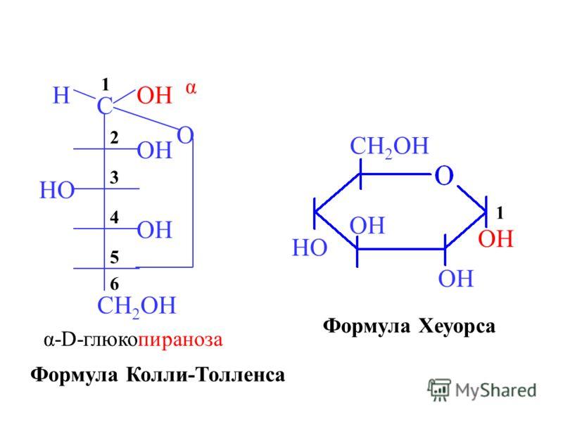 O OH C H CH 2 OH HO OH 6 5 4 3 2 1 α α-D-глюкопираноза OH HO CH 2 OH Формула Колли-Толленса Формула Хеуорса 1