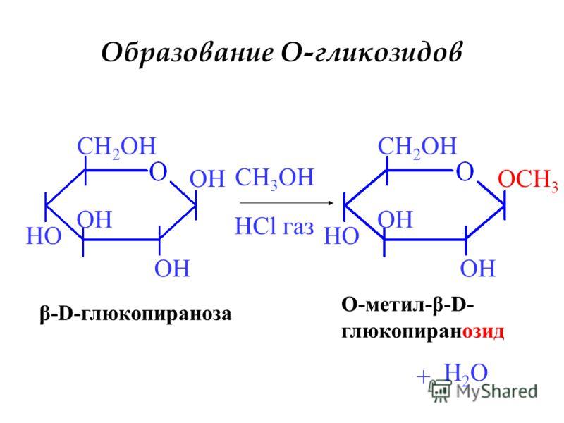 Образование O-гликозидов OH HO CH 2 OH β-D-глюкопираноза CH 3 OH HCl газ OCH 3 OH HO CH 2 OH + O-метил-β-D- глюкопиранозид H2OH2O
