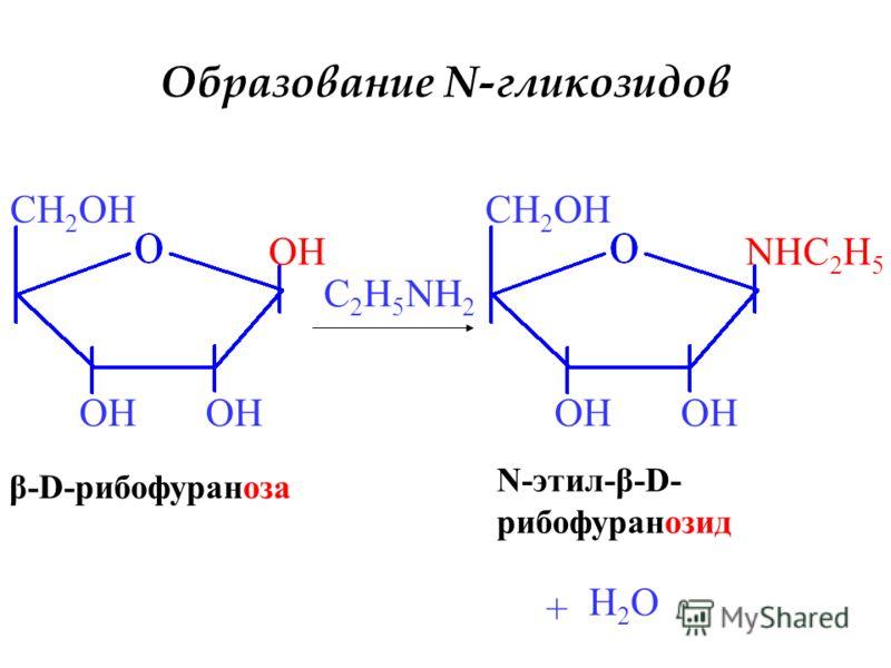 OH CH 2 OH β-D-рибофураноза C 2 H 5 NH 2 NHC 2 H 5 OH CH 2 OH N-этил-β-D- рибофуранозид + H2OH2O Образование N-гликозидов