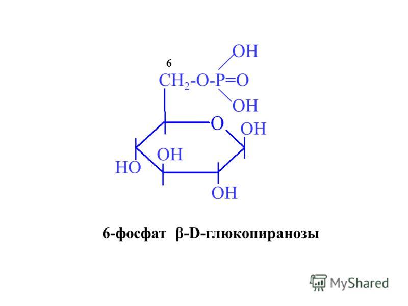 OH HO CH 2 -O-P=O OH 6 6-фосфат β-D-глюкопиранозы