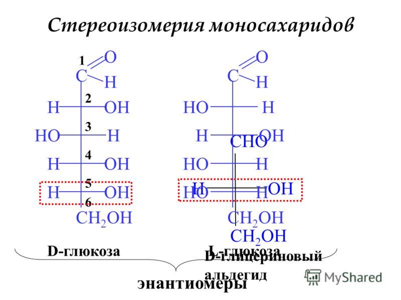 Стереоизомерия моносахаридов C O H H H H H CH 2 OH HO OH 6 5 4 3 2 1 CHO CH 2 OH HOH D-глицериновый альдегид D-глюкоза C O H HO H H CH 2 OH HO H H OH L-глюкоза энантиомеры
