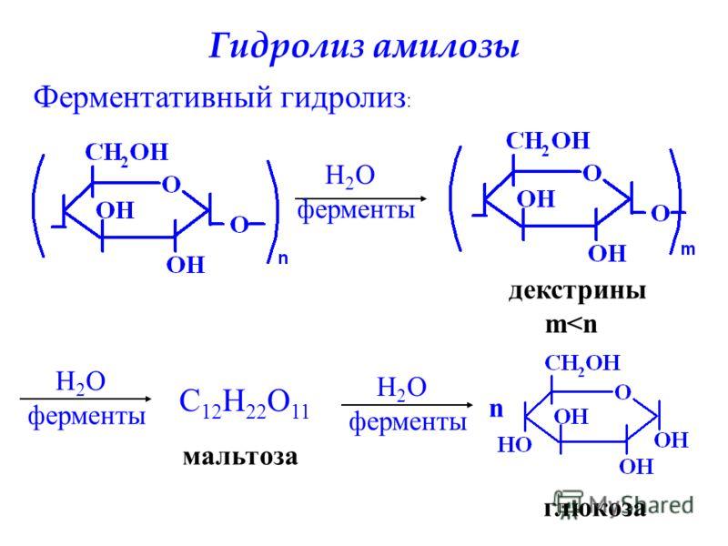 Гидролиз амилозы Ферментативный гидролиз : H 2 O ферменты декстрины m