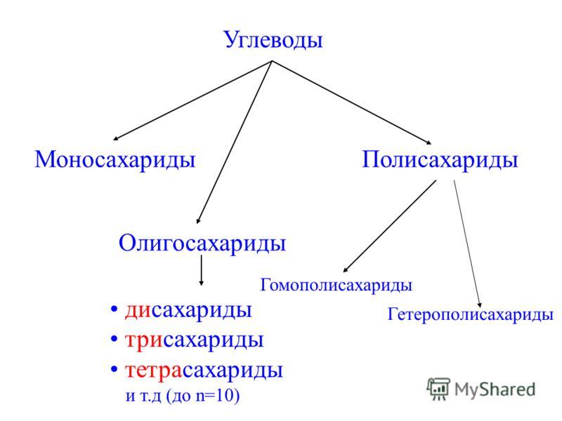 Углеводы МоносахаридыПолисахариды Олигосахариды Гомополисахариды дисахариды трисахариды тетрасахариды и т.д (до n=10) Гетерополисахариды