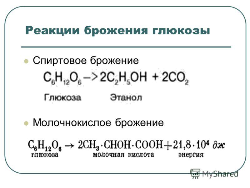 Реакции брожения глюкозы Cпиртовое брожение Молочнокислое брожение