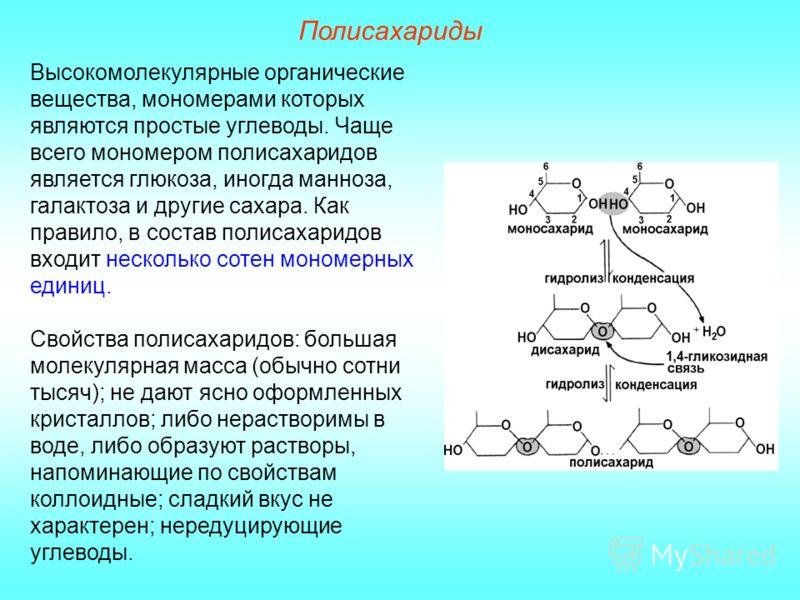 Полисахариды Высокомолекулярные органические вещества, мономерами которых являются простые углеводы. Чаще всего мономером полисахаридов является глюкоза, иногда манноза, галактоза и другие сахара. Как правило, в состав полисахаридов входит несколько