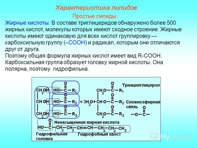 Характеристика липидов Простые липиды. Жирные кислоты. В составе триглицеридов обнаружено более 500 жирных кислот, молекулы которых имеют сходное строение. Жирные кислоты имеют одинаковую для всех кислот группировку карбоксильную группу (–СООН) и рад
