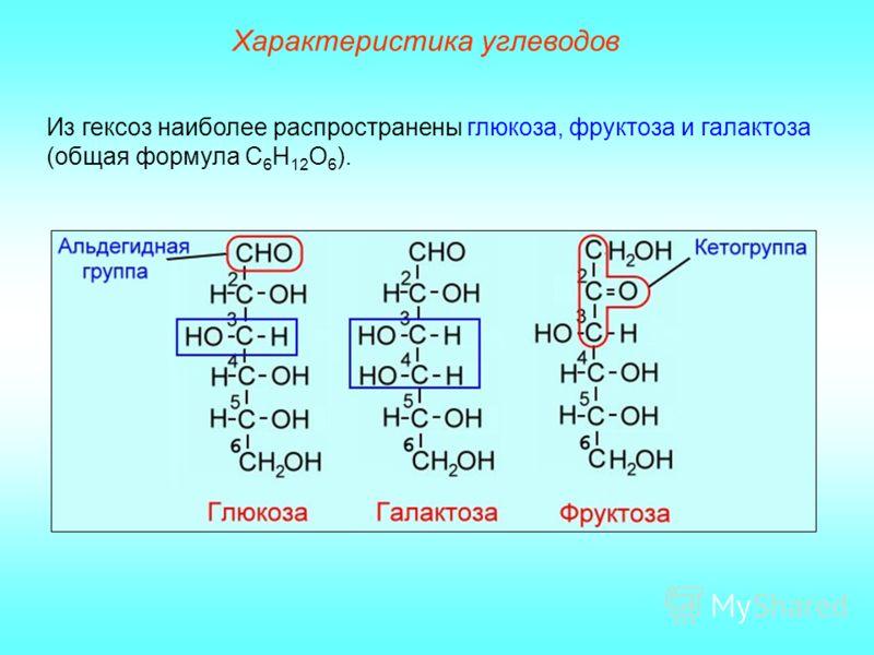 Характеристика углеводов Из гексоз наиболее распространены глюкоза, фруктоза и галактоза (общая формула С 6 Н 12 О 6 ).