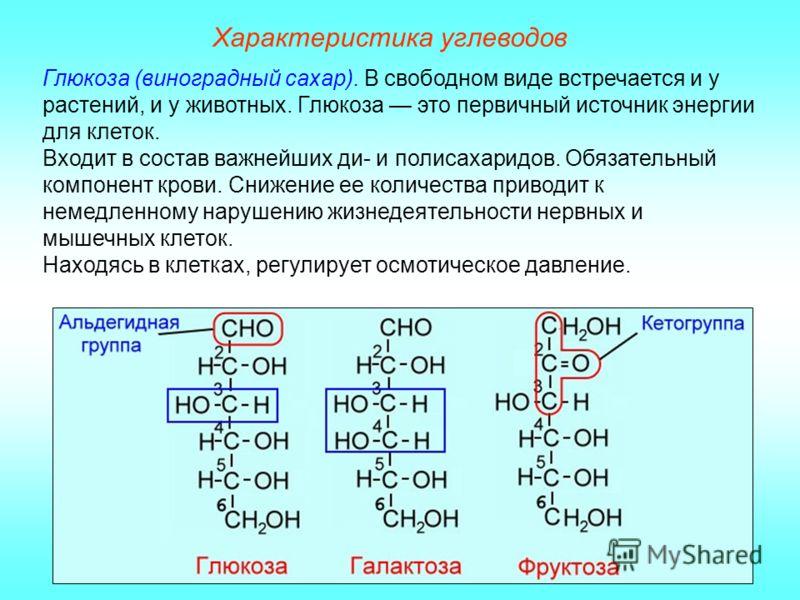 Характеристика углеводов Глюкоза (виноградный сахар). В свободном виде встречается и у растений, и у животных. Глюкоза это первичный источник энергии для клеток. Входит в состав важнейших ди- и полисахаридов. Обязательный компонент крови. Снижение ее