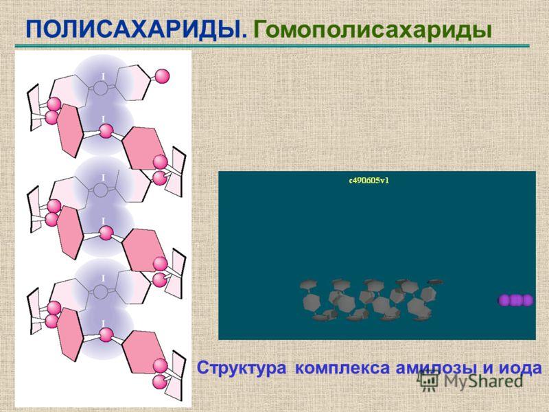 ПОЛИСАХАРИДЫ. Гомополисахариды Структура комплекса амилозы и иода