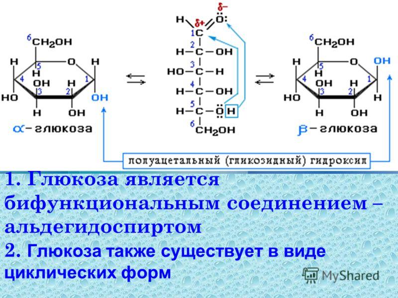 1. Глюкоза является бифункциональным соединением – альдегидоспиртом 2. Глюкоза также существует в виде циклических форм