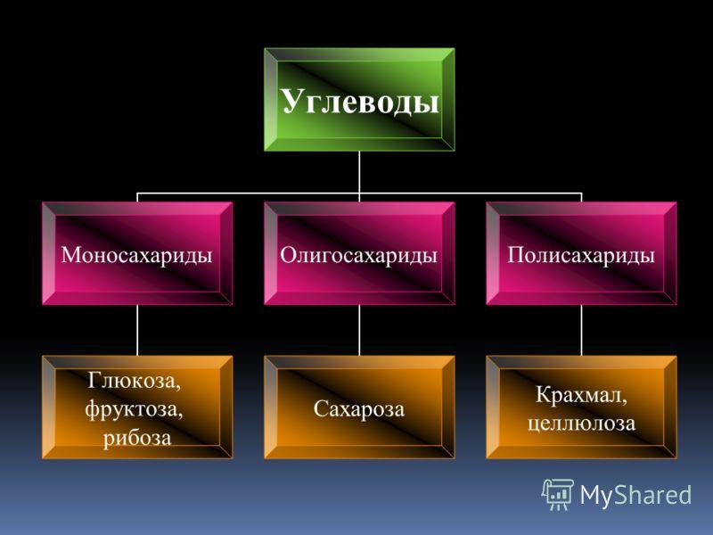 Углеводы Моносахариды Глюкоза, фруктоза, рибоза Олигосахариды Сахароза Полисахариды Крахмал, целлюлоза
