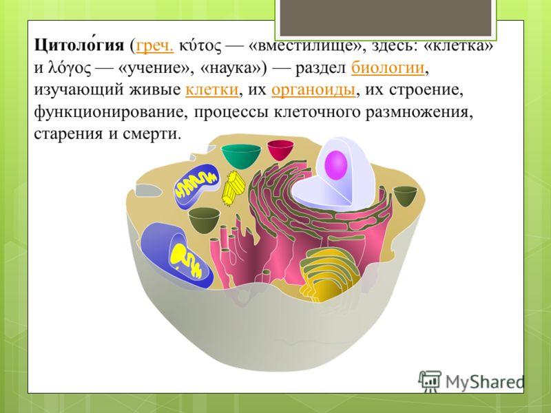 цор по теме состав белков