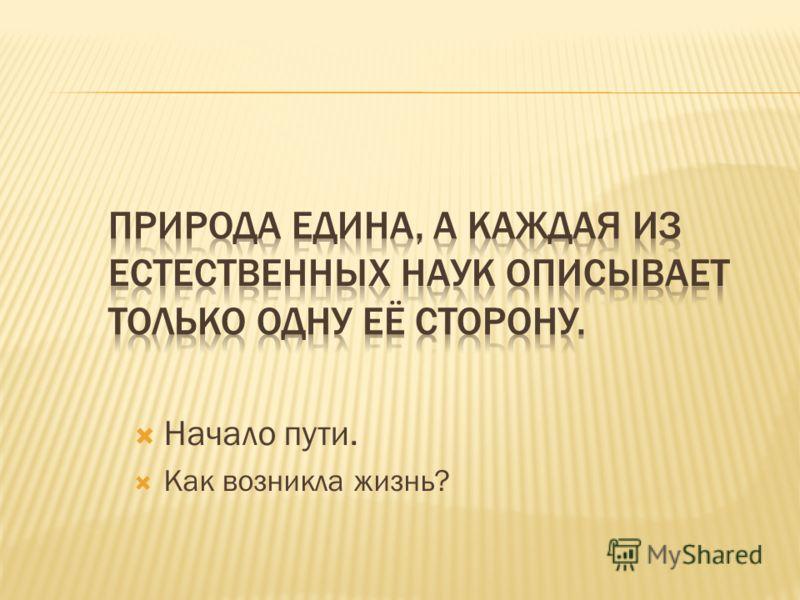 Автор Ермишева Елена Васильевна