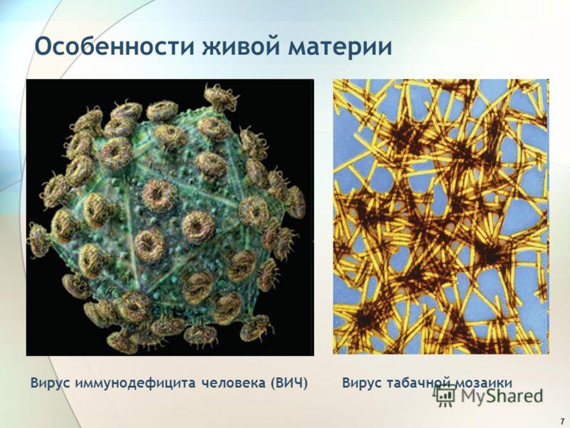 7 Особенности живой материи Вирус иммунодефицита человека (ВИЧ)Вирус табачной мозаики