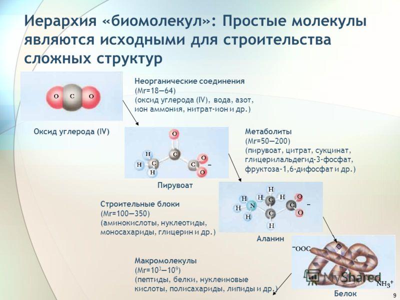 9 Иерархия «биомолекул»: Простые молекулы являются исходными для строительства сложных структур Неорганические соединения (Mr=1864) (оксид углерода (IV), вода, азот, ион аммония, нитрат-ион и др.) Оксид углерода (IV)Метаболиты (Mr=50200) (пирувоат, ц